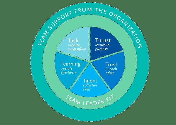 T7 team effectiveness model